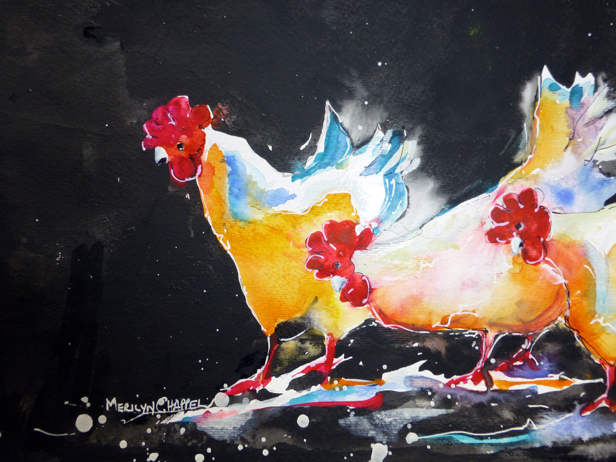 Country-chooks