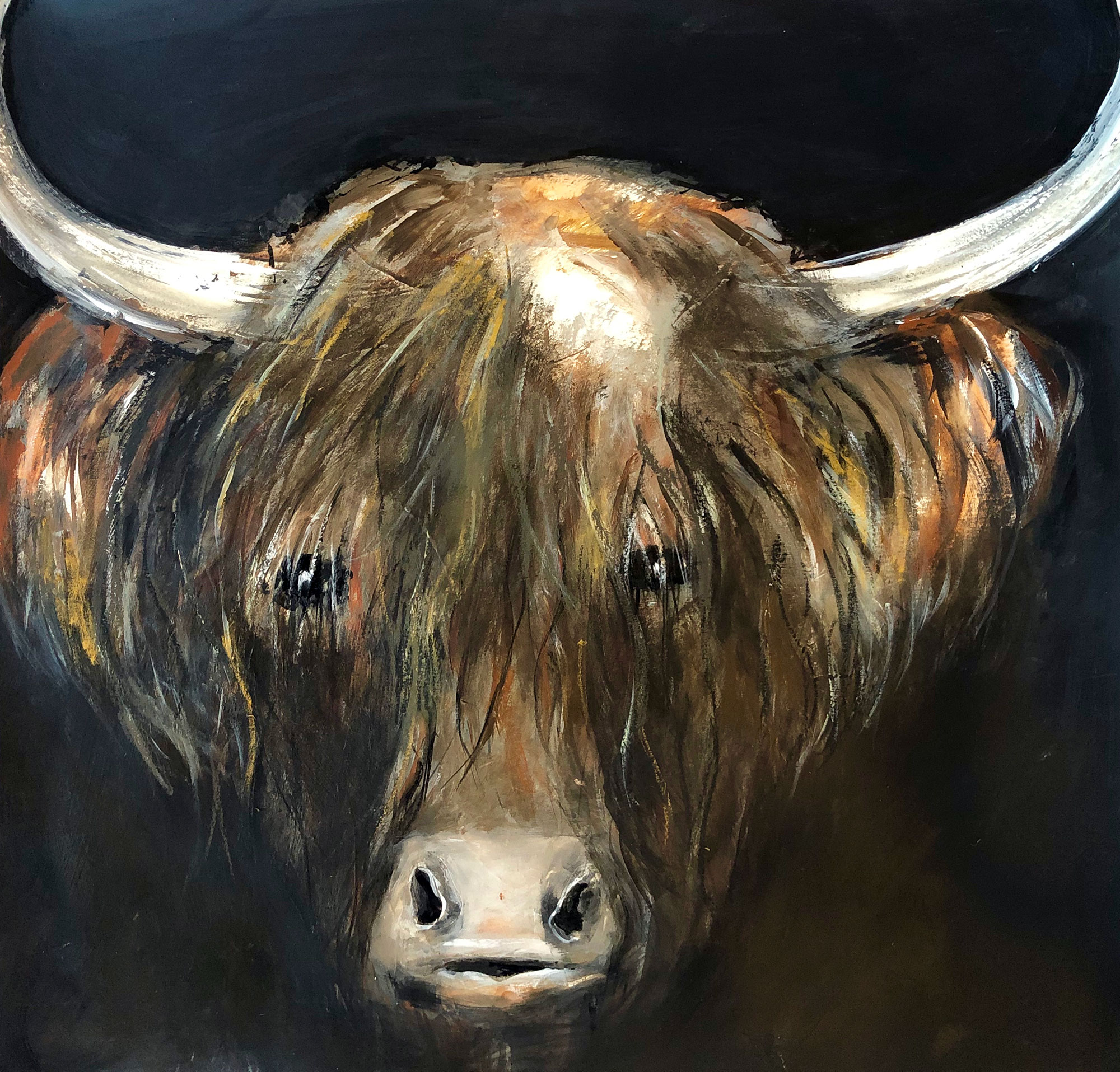 Mac-the-highland-cow
