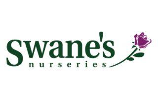 Swanes